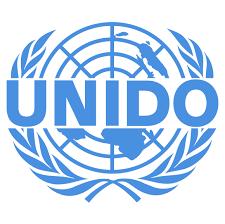 United Nations Industrial Development Organisation (UNIDO)